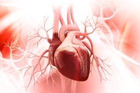 Pneumonia or sepsis in adults associated with increased risk of cardiovascular disease